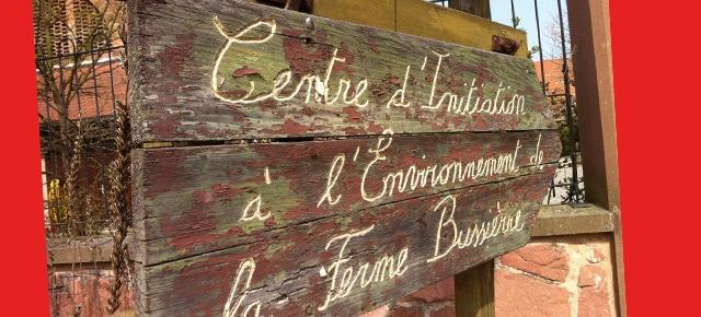 Cause-Café au CINE de Bussierre : le numérique et l'écologie : une convergence possible ?