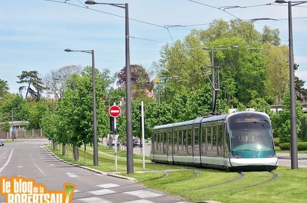 Tram contre Bus de la ligne 6