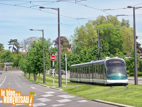 tramvsbus 5
