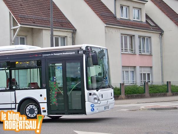 tramvsbus 6