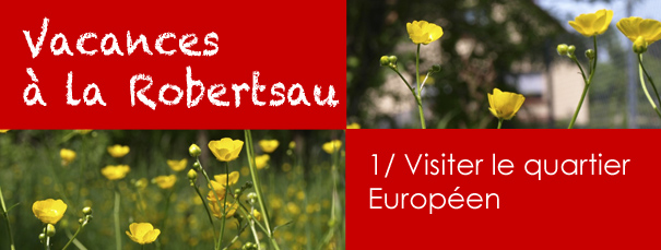 vacancesrobertsau_europe