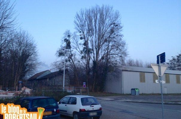 Hangars de LANA rue de l'Anguille : le permis de démolir est affiché