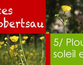 Vacances à la Robertsau : en harmonie avec la nature !