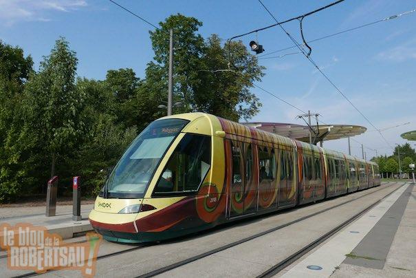 tram_moche 3