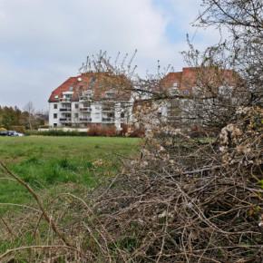 Alsace Nature met le point sur le i du PLUi de l'Eurométropole