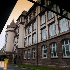 Collège de la Robertsau : le point de vue d'un parent
