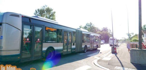 Tram E : Le crépuscule des bus à la Robertsau ?