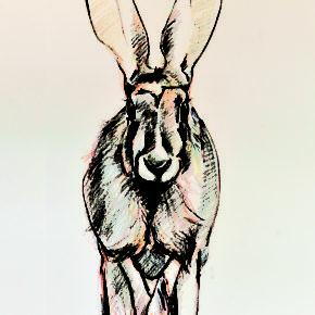 Exposition au CINE de Bussierre : Versant animal