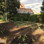 Stage d'initiation à la permaculture au jardin d'Appolonia