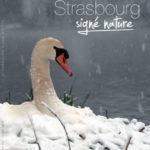 Strasbourg signé nature, le livre de Bernard Irrmann est disponible