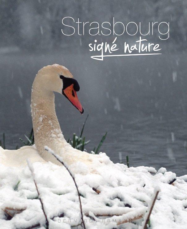 signe_nature-4
