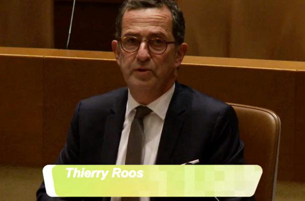 Interpellation de Monsieur Thierry ROOS : Saint-Louis et la démocratie locale