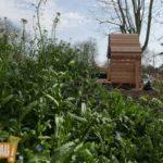 Le jardin du bonheur à la Robertsau