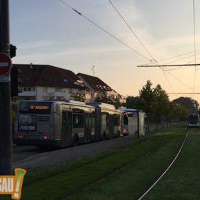 Tram E : démolition, fouille et enquête