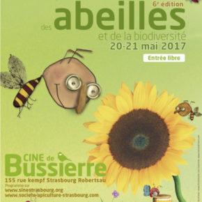 Les abeilles font leur festival à Bussierre