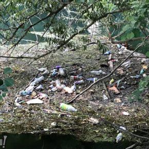 Voilà où finissent vos bouteilles plastiques... et c'est moche !