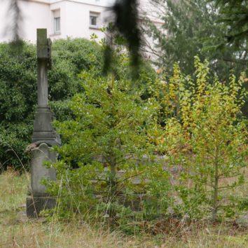 Tombes de la famille de Pourtalès : la Ville va intervenir
