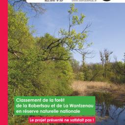 L'Echo de la Robertsau : le magazine de notre quartier vient de sortir !