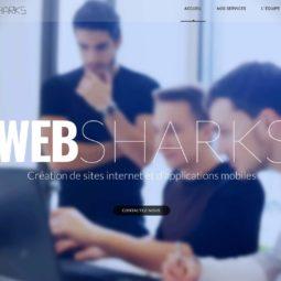 WebSharks : de jeunes Robertsauviens pour votre site Internet