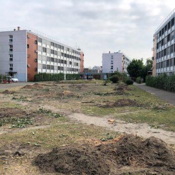 Réaménagement de l'espace central à la Cité U de la Robertsau.