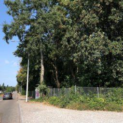 Quai Jacoutot : un nouveau centre technique en pleine zone verte !
