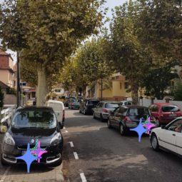 Rue des Peupliers - Thierry Roos écrit au maire de Strasbourg