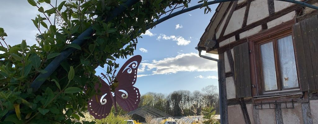 Alsace 20 : reportage sur le Jardin de Marthe