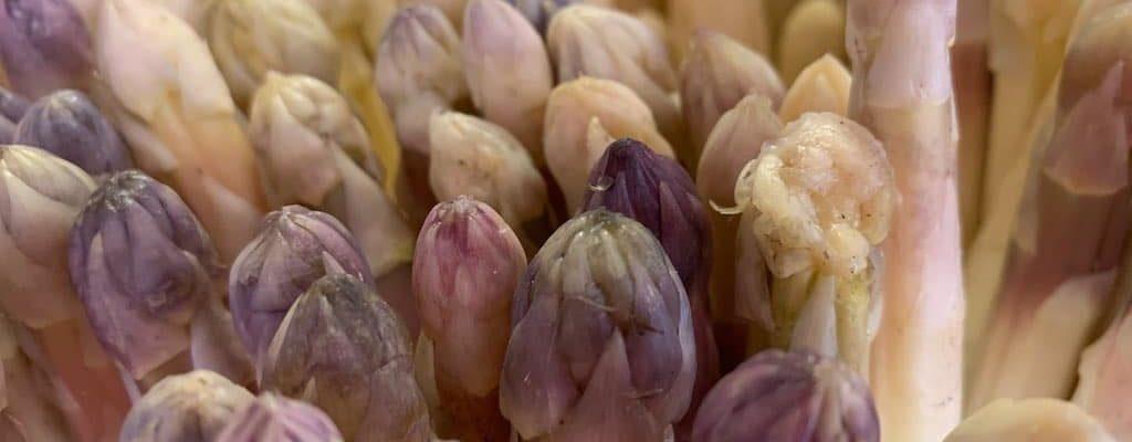Asperge 2019 : le délice du printemps alsacien arrive à la Robertsau