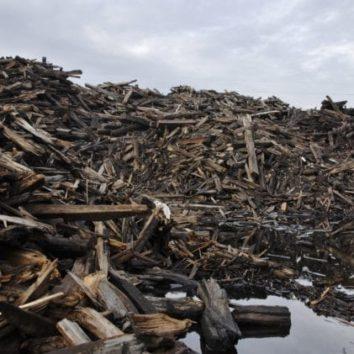 [Presse] 2000 tonnes de traverses toxiques à quelques encablures de la Robertsau