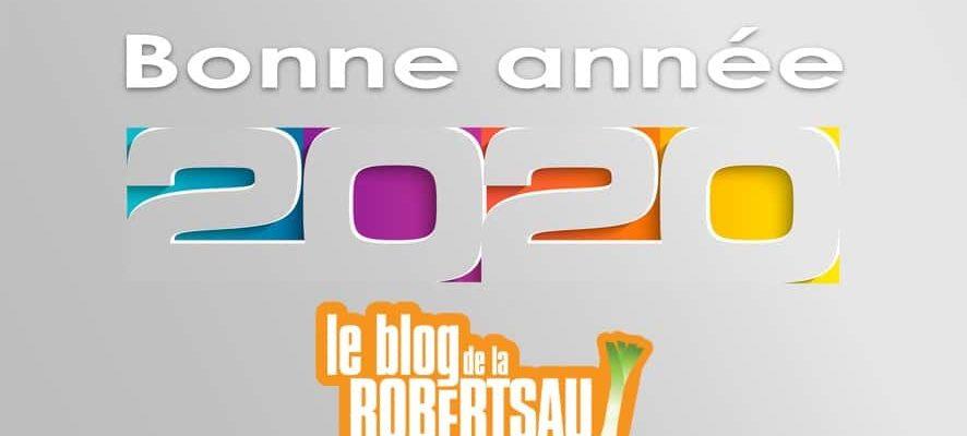 Les sujets (hors Covid) qui ont marqué l'année 2020 de la Robertsau