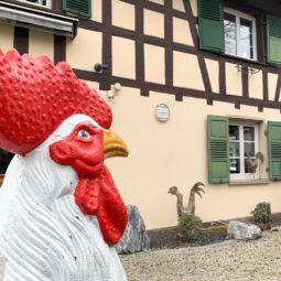 Coq Blanc : l'adresse que recommande votre palais