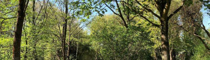 Muhlwasser – Cimetière Nord