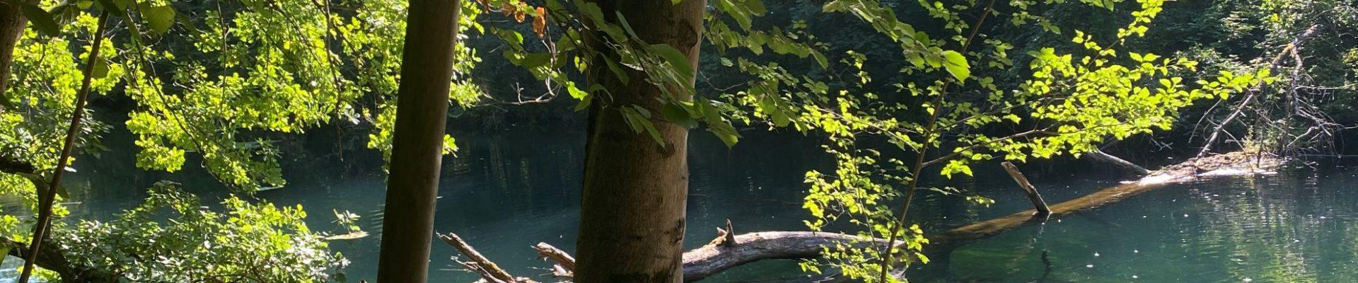 [On a testé] Strasbourg, La Ville Nature
