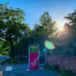 Lecture au CINE de Bussierre : Albert Schweitzer, Respect et responsabilité pour la vie