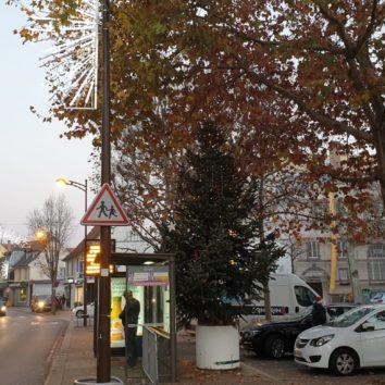 La Rob.com : les commerçants de la Robertsau se mobilisent pour Noël