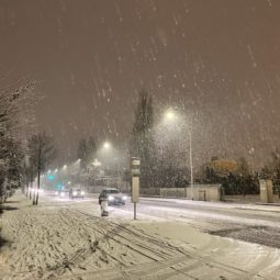 [Photos] Il neige sur la Robertsau