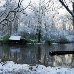 La Robertsau sous la neige : vos photos