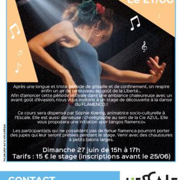 Stage de Flamenco à l'Escale